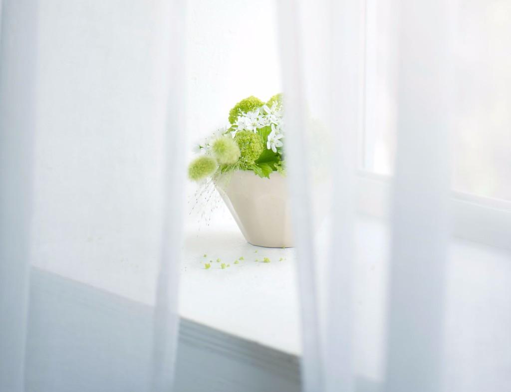 Decorative photo of flowers on windowsill